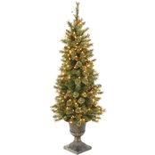 National Tree Company 4 ft. Glittery Gold Pine Entrance Tree with Clear Lights