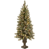 National Tree Company Glittery Bristle Entrance Tree with Warm White LED Lights