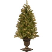 National Tree Company 4 ft. Downswept Douglas Fir Entrance Tree with Clear Lights