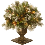 National Tree Company 24 in. Wintry Pine Porch Bush with Clear Lights