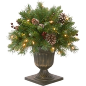 National Tree Company Frosted Berry Porch Bush with Clear Lights