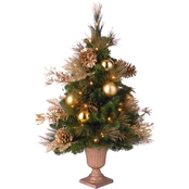 National Tree Company 3 ft. Decorative Coll. Elegance Entrance Tree Clear Lights