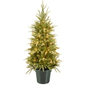 National Tree Company 4 ft. Weeping Spruce Tree with Clear Lights