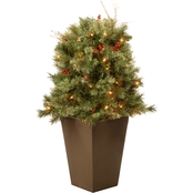 National Tree Company Glistening Pine Porch Bush with Clear Lights