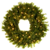 National Tree Co. 24 in. Norwood Fir Wreath with Battery Operated White LED Lights