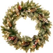 National Tree Co. 24 in. Dunhill Fir Wreath with Clear Lights