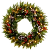 National Tree Co. 24 in. Frosted Berry Wreath with Clear Lights