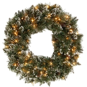 National Tree Co. 24 in. Glittery Bristle Pine Wreath with Clear Lights