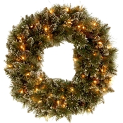 National Tree Co. 24 in. Glittery Bristle Pine Wreath with Battery Power White LEDs