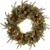 National Tree Co. 24 in. Frosted Arctic Spruce Wreath with Clear Lights