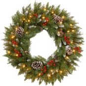National Tree Co. 30 in. Frosted Berry Wreath with Clear Lights
