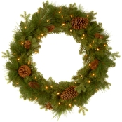 National Tree Co. 24 in. Eastwood Spruce Wreath with Battery Operated White LEDs