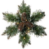 National Tree Co. 14 in. Glittery Bristle Pine Snowflake with Battery Power LEDs