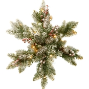 National Tree Co. 18 in. Snowy Dunhill Fir Snowflake with Battery Power White LEDs