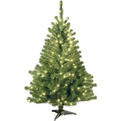 National Tree Company 4 ft. Kincaid Spruce Tree with Clear Lights