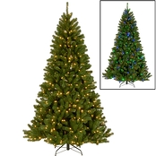 National Tree Company 7.5 ft. North Valley Spruce Tree with Dual Color LED Lights