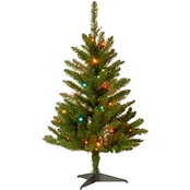 National Tree Company 3 ft. Kingswood Fir Tree with Multicolor Lights