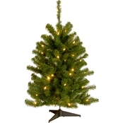 National Tree Company 3 ft. Eastern Spruce Tree with Clear Lights