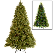 National Tree Company 7.5 ft. Downswept Douglas Fir Tree with Dual Color LED Lights