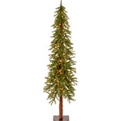 National Tree Company 6 ft. Hickory Cedar Tree with Clear Lights