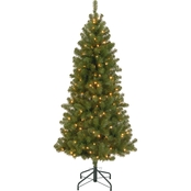 National Tree Company 7 ft. Canadian Grande Fir Tree with Clear Lights