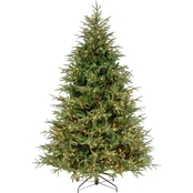 National Tree Company 7.5 ft. Frasier Grande Tree with Clear Lights