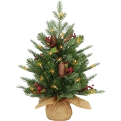 National Tree Company 2 ft. Nordic Spruce Tree with Battery Operated White LEDs
