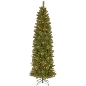 National Tree Company 7.5 ft. Tacoma Pine Pencil Slim Tree with Clear Lights