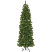 National Tree Company 7.5 ft. Pennington Fir Pencil Tree with Clear Lights