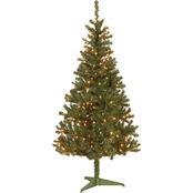 National Tree Company 6 ft. Canadian Grande Fir Tree with Clear Lights