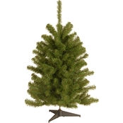 National Tree Company 3 ft. Eastern Spruce Tree