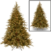 National Tree Company 6 ft. Frasier Grande Tree with Dual Color LED Lights