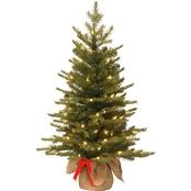 National Tree Co. 3 ft. Nordic Spruce Tree with Battery Operated Warm White LEDs