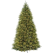 National Tree Company 10 ft. Dunhill Fir Tree with Clear Lights
