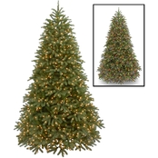 National Tree Company 7.5 ft. Jersey Fraser Fir Medium Tree Dual Color LED Lights