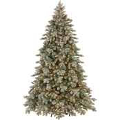 National Tree Company 7.5 ft. Frosted Colorado Spruce Tree with Clear Lights