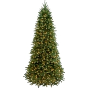 National Tree Company 9 ft. Jersey Fraser Fir Slim Tree with Clear Lights