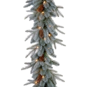 National Tree Co. 9 Ft. Frosted Arctic Spruce Garland with Clear Lights