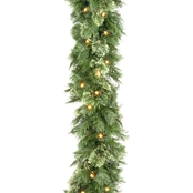 National Tree Co. 9 Ft. Wispy Willow Garland with Clear Lights
