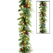 National Tree Co. 9 Ft. Colonial Garland with Battery Operated Dual Color LEDs