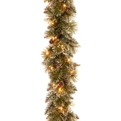 National Tree Co. 9 Ft. Glittery Bristle Pine Garland with Clear Lights