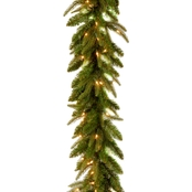 National Tree Co. 9 Ft. Frasier Grande Garland with Clear Lights