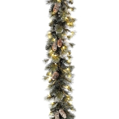National Tree Co. 24 in. Glittery Pine Wreath with Clear Lights