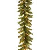 National Tree Co. 9 Ft. Downswept Douglas Garland with Clear Lights