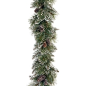 National Tree Co. 6 Ft. Glittery Bristle Pine Garland