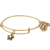 Alex and Ani Charity by Design True Wish Charm Bangle