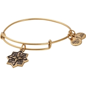 Alex and Ani Healing Love Charm Bangle Bracelet