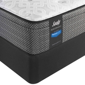 Sealy Response Performance Regatta Bay Firm Euro Top Mattress