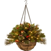 National Tree Company 20 In. Crestwood Spruce Hanging Basket