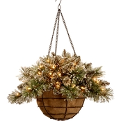 National Tree Company 20 In. Glittery Bristle Pine Hanging Basket